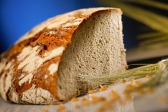 Brot-Getreide